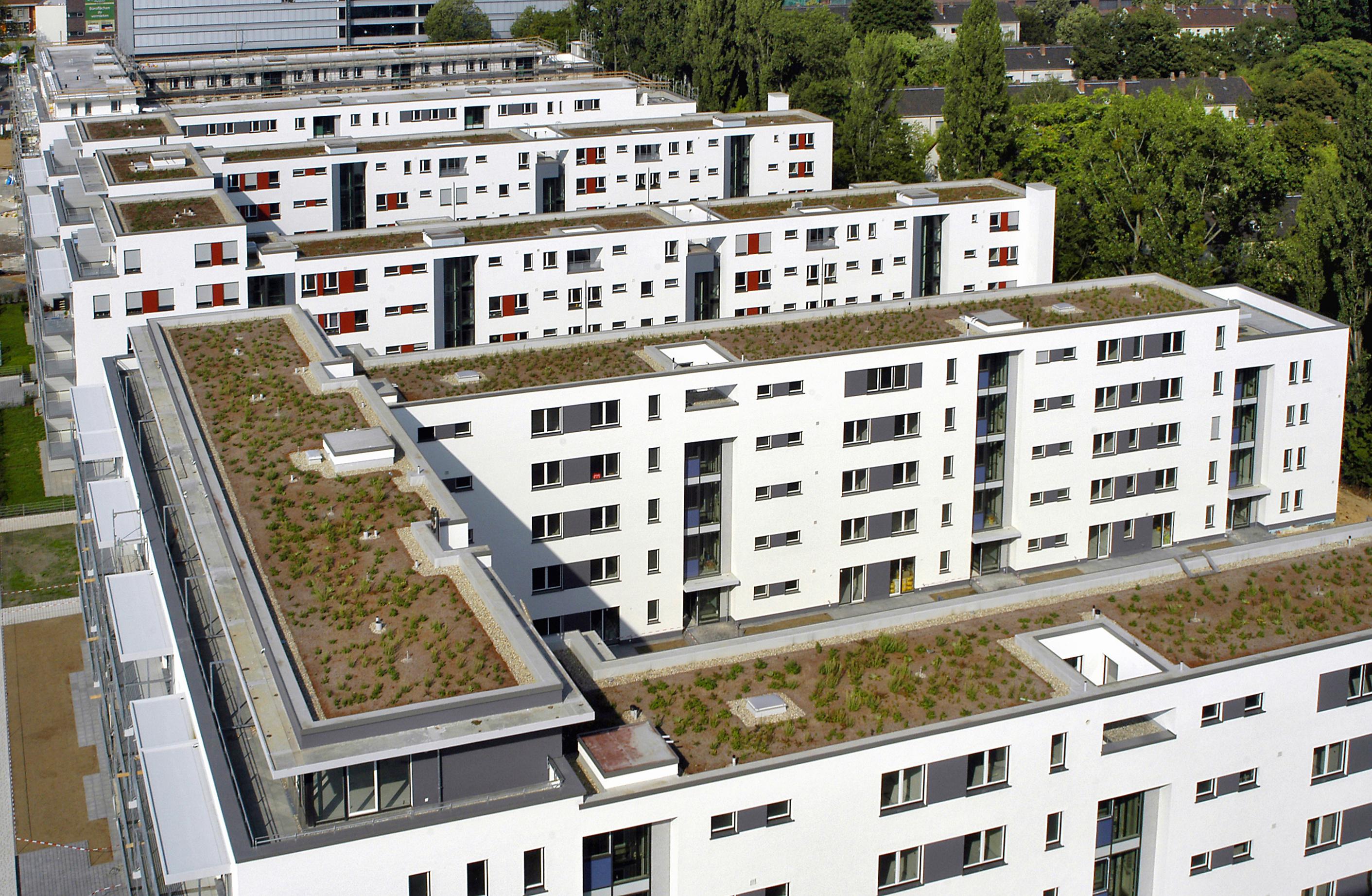 Entwicklung des Wiener Wohnungsmarktes